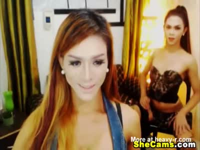 Beautiful Shemales Give Each Other Awesome Blowjobs