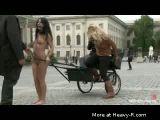 Public Pony Ride