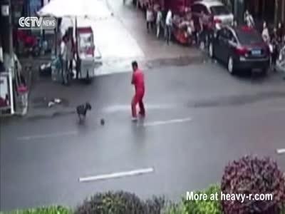 Pitbull Attacks Several Pedestrians