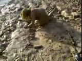 Drunk fatty takes a mud bath