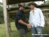 Gay Papi Twinks In Barebacked Sex