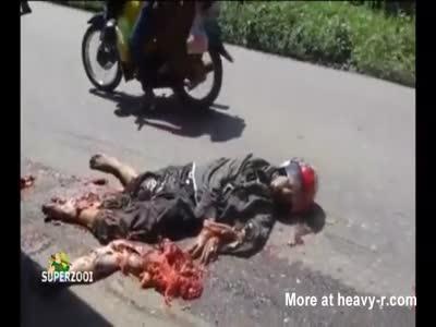 Human Road Kill